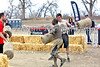 Spartan Race, Four Mile Obstacle Course, Fort Carson Army Base, Colorado