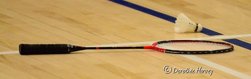 Badminton Decembre 2014