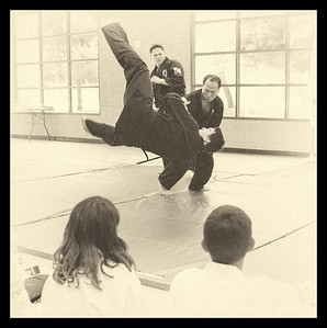 Hapkido Grandmaster Throwing Student