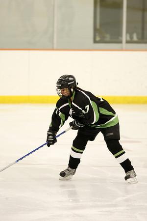High School Hockey 2011-12