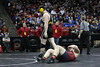 High School Wrestling 2012-13 : 13 galleries with 4438 photos