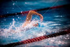 SJS Swimming