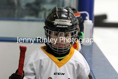 Youth Hockey Tournaments 2018