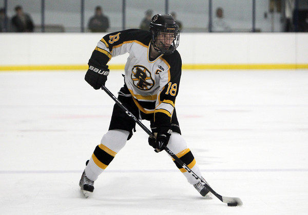 Bishop Fenwick senior captain PJ Usalis controls the puck against St. Mary's of Lynn on Saturday afternoon.  David Le/Staff Photo