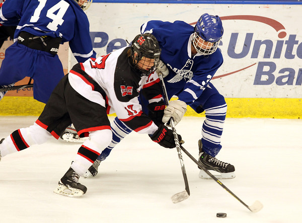 Danvers junior forward Trevor Daly, right, battles for control of the puck with Marblehead junior Dean Fader, left, on Saturday afternoon. David Le/Staff Photo