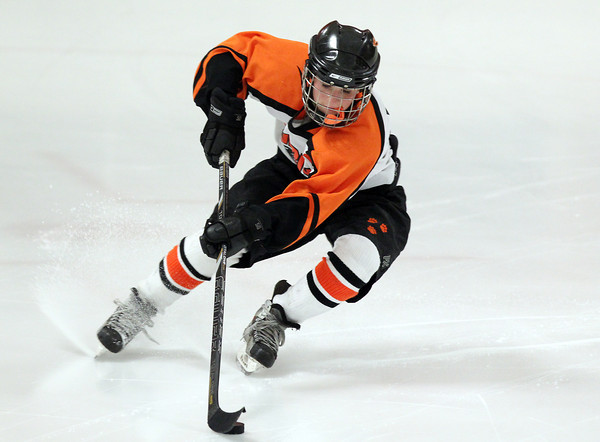 Woburn: Beverly senior captain Livvy Konaxis controls the puck against Arlington Catholic on Wednesday evening in the D1 State Quarterfinal. Konaxis and the Panthers couldn't manage to get by the Cougars, falling 4-0 at O'Brien Rink in Woburn. David Le/Salem News