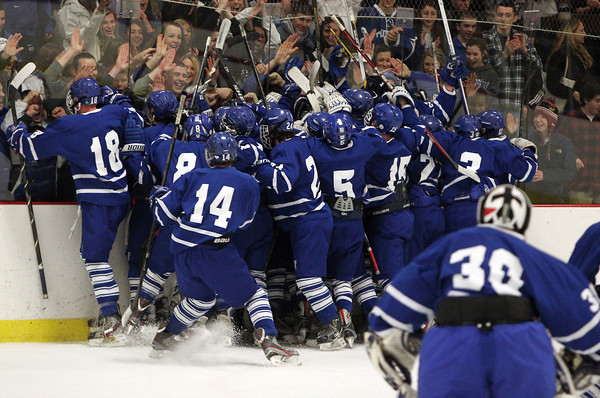 Woburn: The Danvers High School hockey team streams onto the ice and celebrates against the boards closest to the Falcon cheering section. The 8th seeded Falcons upset NEC rival and top seeded Beverly, 4-3 on Friday evening. David Le/Salem News