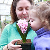 Beverly: Bethany Mullen, of Beverly, holds a small flower arrangement for her daughter Emma, 1 1/2, to smell at The Leonhards' Florist and Garden Center on Friday afternoon. David Le/Salem News