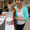 "Peabody: Donna DiMare, Office Manager at Northeast Veterinary Hospital on Lowell St. in Peabody holds Skippy, the house cat of the clinic next to a jar for donations to the ""Keeno"" Fund. David Le/Salem News"