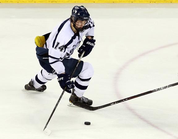 Lowell: St. John's Prep junior Tyler Bird carries the puck up-ice against Austin Prep on Wednesday evening. David Le/Salem News