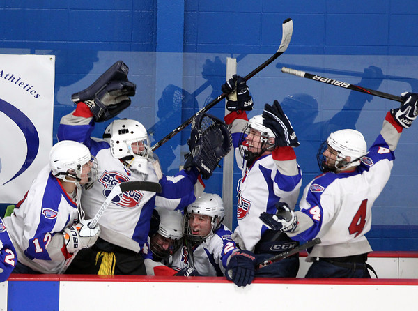 Stoneham: Players on the Swampscott bench erupt in celebration after senior captain Chris Carman scored the game-tying goal against Bedford with 2:13 left to play in the third period. Swampscott captured their first D3 North Title with a thrilling 3-2 win on Saturday afternoon at Stoneham Arena. David Le/Salem News