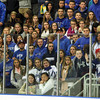 Salem: A large crowd of Danvers fans watch a play down ice as the Falcons took on undefeated Beverly in a clash between the top two teams in the NEC Large on Saturday afternoon. David Le/Salem News