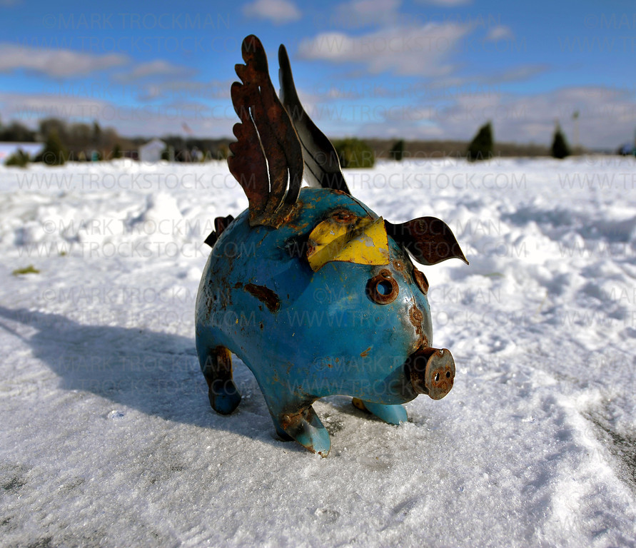 A flying pig decorates a fairway at the Orono Lions 25th annual 'Snowball Open' at Nelson Park held Saturday, Jan. 28, on Long Lake.