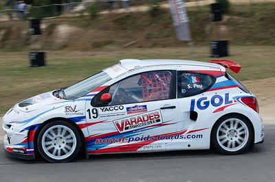 Samuel Peu (Division 1, Peugeot 207 T16 4x4)