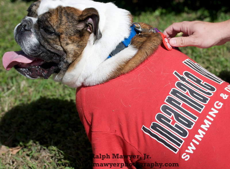 FB_UIW Tailgate_20091031  027