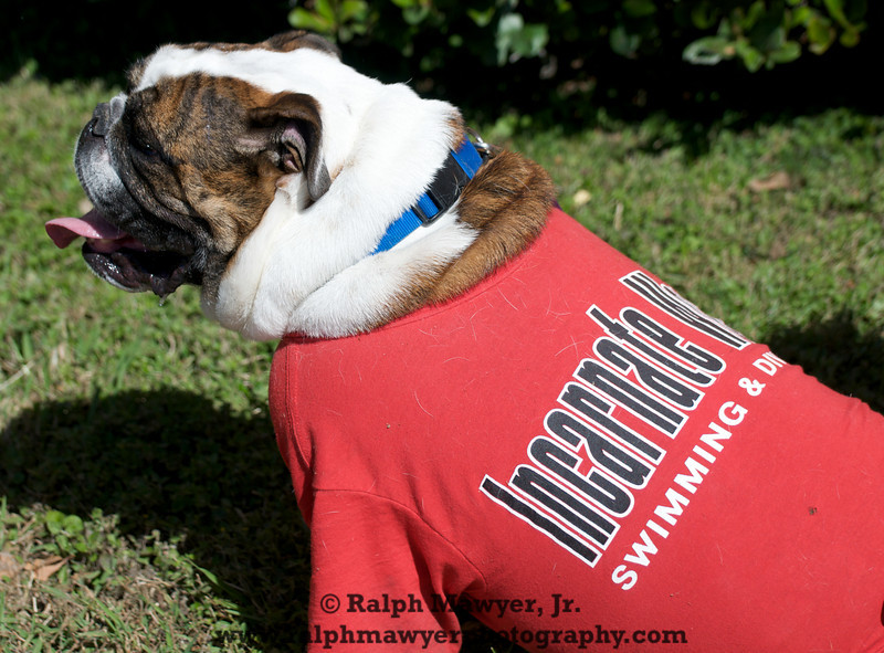 FB_UIW Tailgate_20091031  028