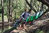 Robby Swift_Maui Jaws  022