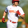 Pittsburg State's Hunter Clanin rounds the bases after a sixth-inning grand slam during the Gorillas game against Missouri Southern on Tuesday at PSU.<br /> Globe | Laurie Sisk