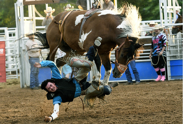 Pittsburg cowboy XX XX takes a tumble during the saddle bronc competition on Saturday night at the 42nd Annual Carthage Stampede Rodeo at the Carthage Saddle Club Arena.<br /> Globe | Laurie Sisk