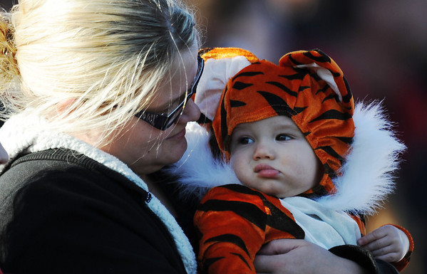 Globe/T. Rob Brown<br /> One of the youngest Lamar Tigers football fans, 9-month-old Eli McWilliams wears a tiger costume as he is held by his mother, Rachel McWilliams, Saturday afternoon, Nov. 17, 2012, at Lamar High School's football stadium. Young McWilliams was there to cheer on his uncle Michael McWilliams, who plays on the varsity team.