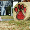 Globe/T. Rob Brown<br /> Lamar Tigers football fans show their support through a display on the road that leads to Lamar High School and the football field Saturday afternoon, Nov. 17, 2012, in Lamar.