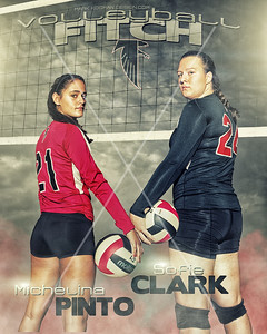Fitch_Volleyball_16x20