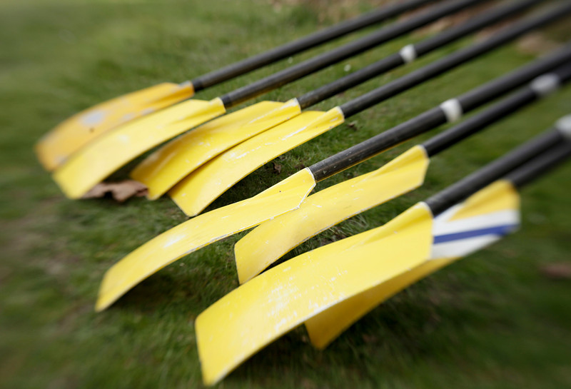 Eight yellow oars, lined up at a regatta, are ready for the crew race to begin. The lens distortion is a result of using a Lensbaby.