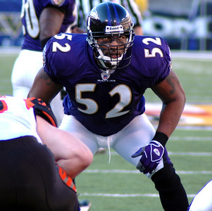 Baltimore Raven linebacker Ray Lewis shos his intensity as he awaits the snap from Bengals QB Jon Kitna.