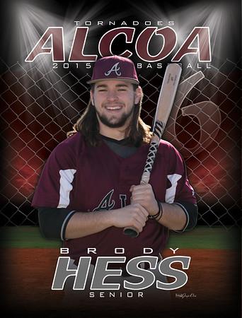 Hess-2015-AHS-Baseball-Banner3x4-rgb
