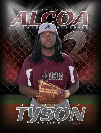 Tyson-2015-AHS-Baseball-Banner3x4 copy-rgb