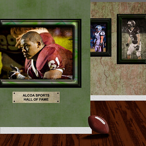 SQUARE PRINT ONLY  5x5, 8x8, 10x10, 12x12. Walls can be customized in every way from color to frames.