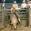 Justin Meeks, Mackinaw, IL rides Almost Showtime during the National Federation of Professional Bullriders competition at the Coles County Fair Grounds in Charleston, Illinois on Saturday, August 1, 2009.  (Jay Grabiec)