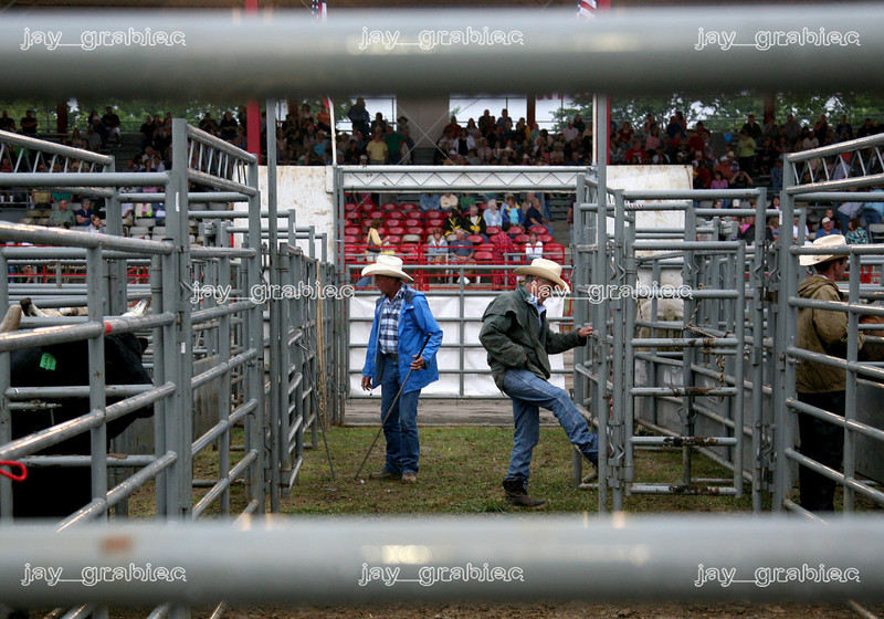 Jimmy Bishop, Green Forest, AR and Greg Roberts, Jewett, IL being to sort the bulls before the start of the National Federation of Professional Bullriders competition at the Coles County Fair ground in Charleston, Illinois on Saturday, Augus 1, 2009.  (Jay Grabiec)