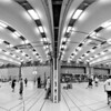The volleyball tournament
