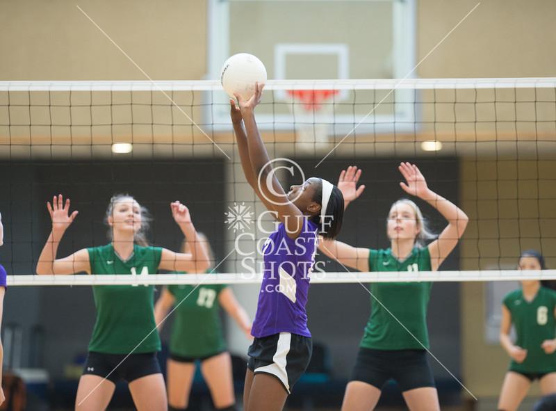 Kinkaid v John Cooper HJPC volleyball championship