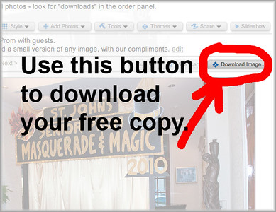 image showing location of download button on galleries that have free downloads available
