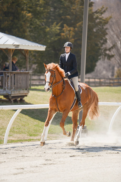 Rider: Olivia Smith<br /> Horse: Time Will Tell<br /> School: Sweet Briar College