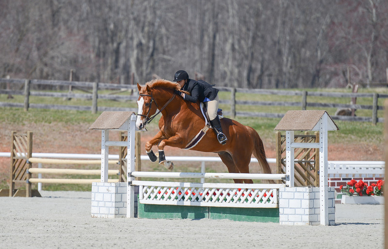 Rider: Lexi Robinson<br /> Horse: Houston<br /> School: Sweet Briar College