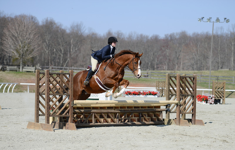Rider: Madison Cromwell<br /> Horse: Well Deserved (aka Taz)<br /> School: Sweet Briar College