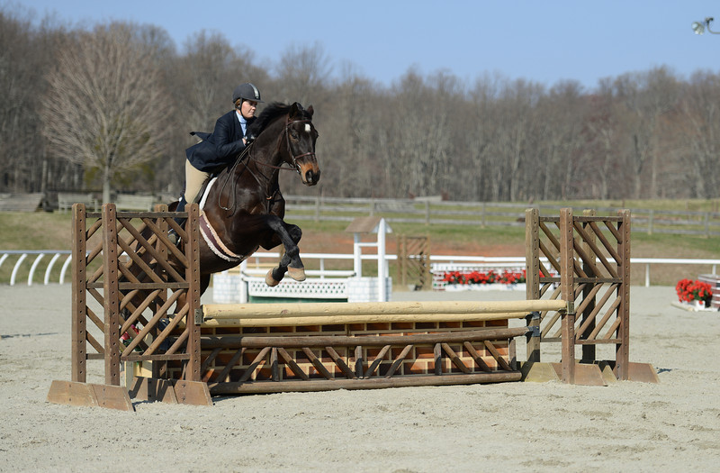 Rider: Kate Bessette<br /> Horse: Lord of the Dance<br /> School: Sweet Briar College