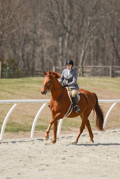 Rider: Haley Reeves<br /> Horse: Summertime<br /> School: Sweet Briar College