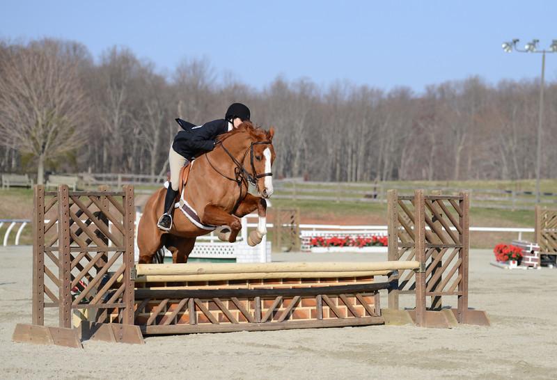 Rider: Carin Brown<br /> Horse: In the Tropics<br /> School: Bridgewater College
