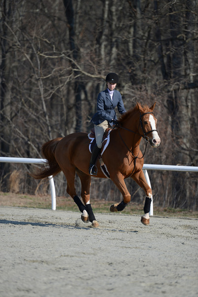 Rider: Stephany West<br /> Horse: Rex<br /> School: Randolph College