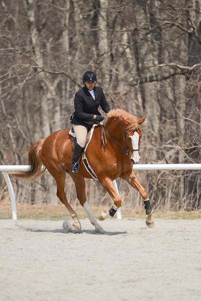 Rider: Lexi Robinson<br /> Horse: Houston<br /> School: Sweet Briar College