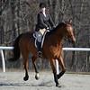 Rider: Amy Jacobs<br /> Horse: Tambor Altanero<br /> School: Randolph College