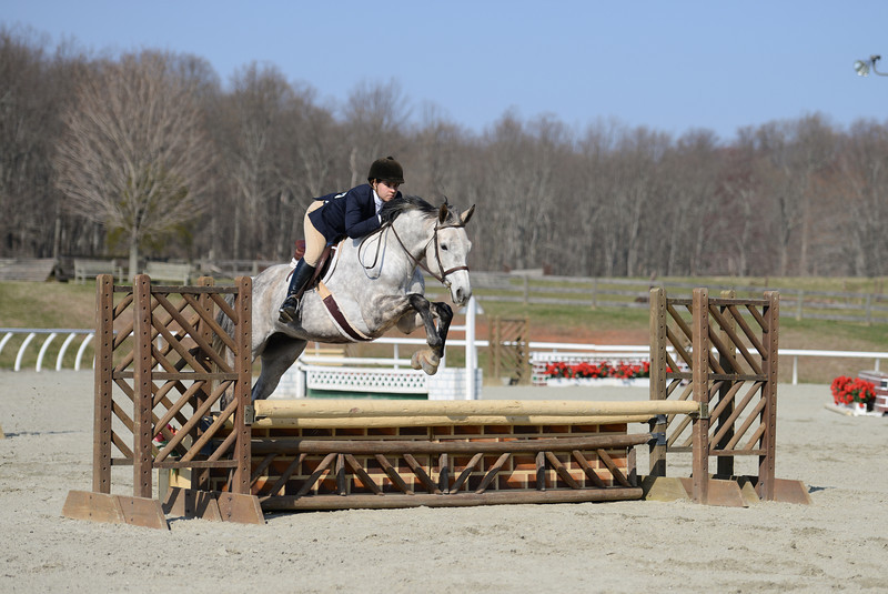 Rider: Julia Bayliss<br /> Horse: Silver Tie<br /> School: Sweet Briar College