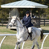 Rider: Samanatha Connolly<br /> Horse: Cassini<br /> School: Sweet Briar College