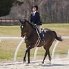 Rider: Emily Manos<br /> Horse: Santiago Pro<br /> School: Bridgewater College