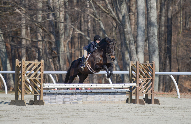 Rider: Fiona Stanton<br /> Horse: With Style (aka Root)<br /> School: Sweet Briar College