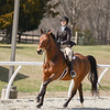Rider: Rachael Jones<br /> Horse: Koen<br /> School: Randolph College